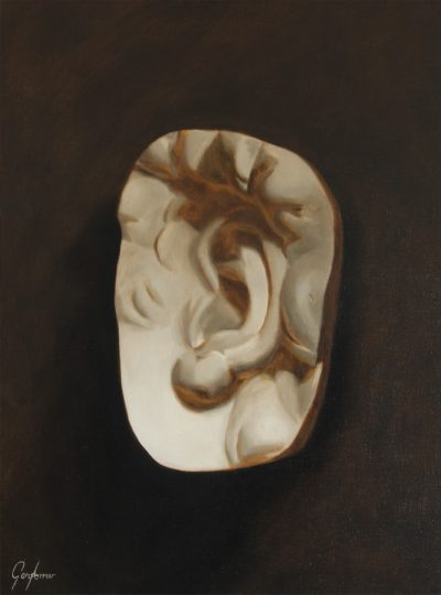 Cast Painting of Michelangelo's David's Ear