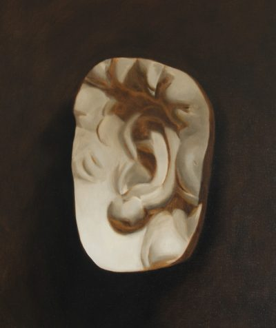 Cast Painting of David's Ear