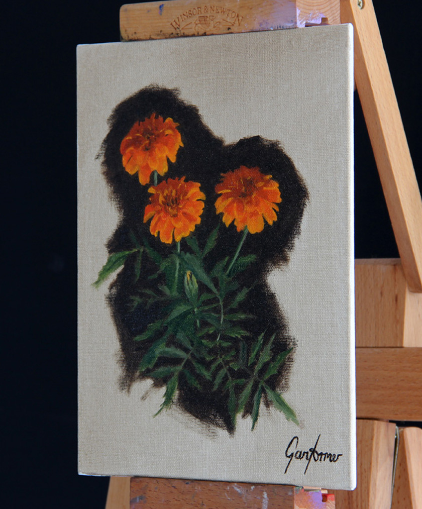 Marigolds Angle Thumbnail